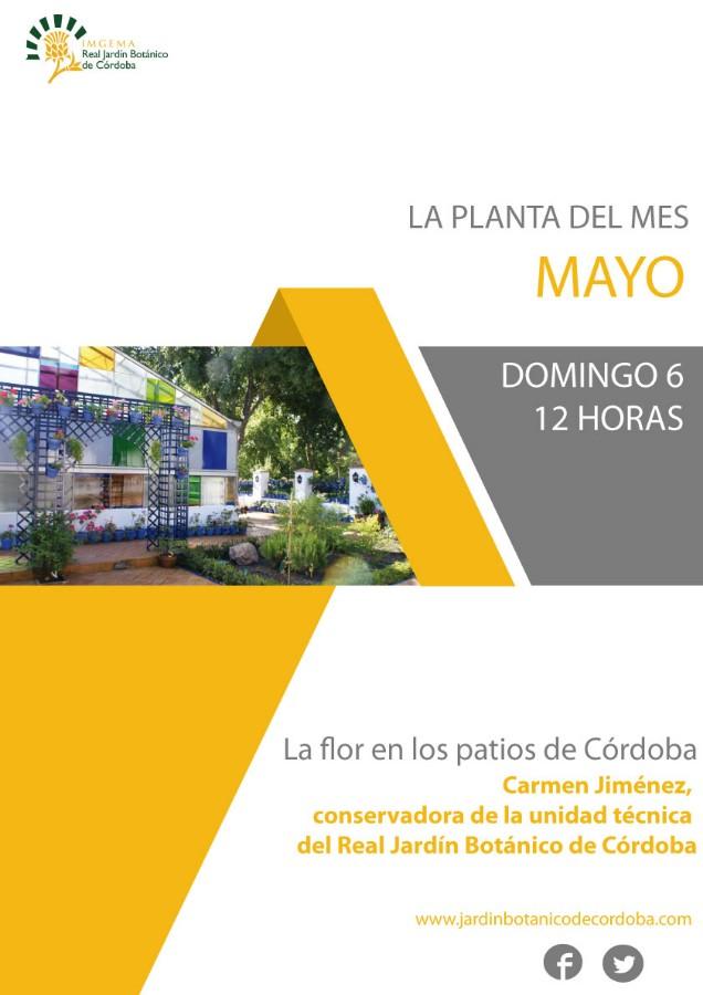 "Charla: ""La flor en los patios de Córdoba"". Jardín Botánico @ Jardín Botánico"